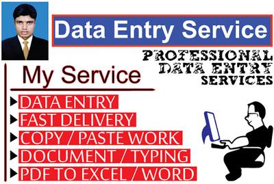 Provide 1 hour of data entry