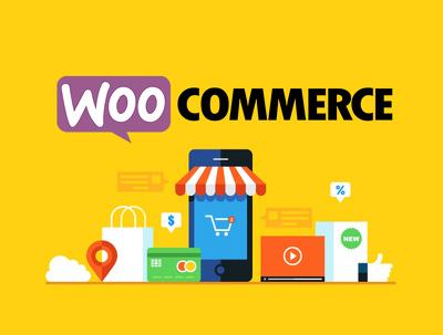 Design And Develop Your WordPress WooCommerce Website