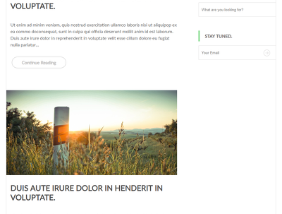 Do Psd To Html Responsive Webpage With Bootstrap, Css