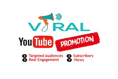 Provide 1000+ Real And Organic Youtube Subscribers