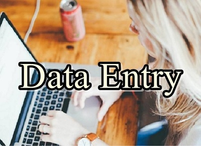 Do any kind of data entry  in one hour