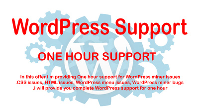 Do WordPress Bugs fix, CSS Fix, miner issues for one hour