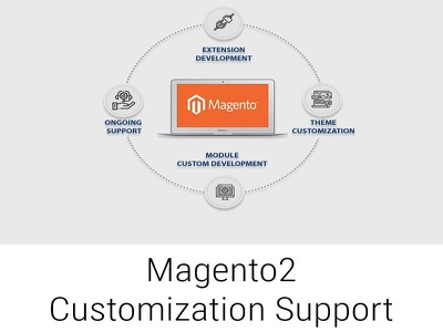 Provide 1hr of Magento customization support