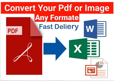 Convert PDF/Images to MS Word 25 pages