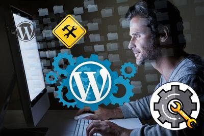 Maintenance/updates /provide one hour customization in WordPress