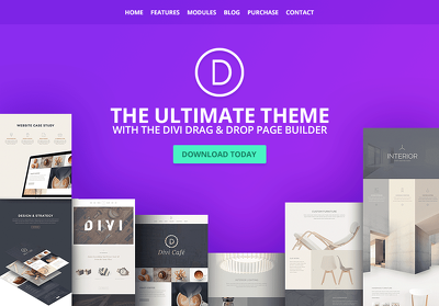 Design And Customize Divi Theeme