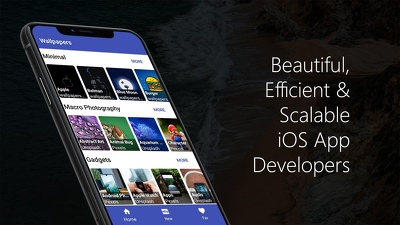 Develop you a high quality iOS