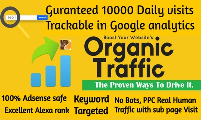 Drive 10,000 + International Website Traffic For Your Seo & Rank