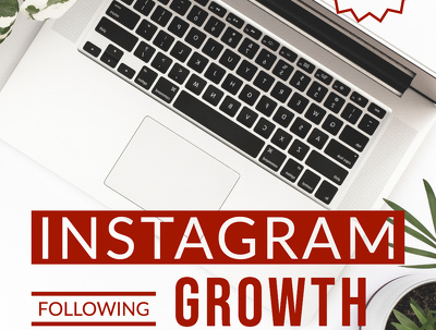 Run Powerful Instagram Management And Growth Service