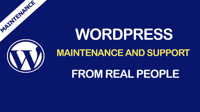 1 hour customization to WordPress website / theme / maintenance