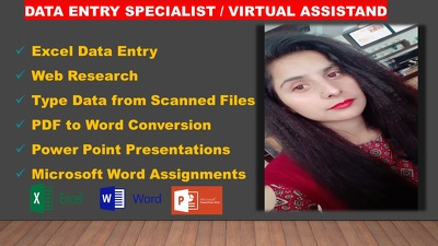 Do 200 Excel_Entries/Typing/WebResearch Work of 3 Hrs