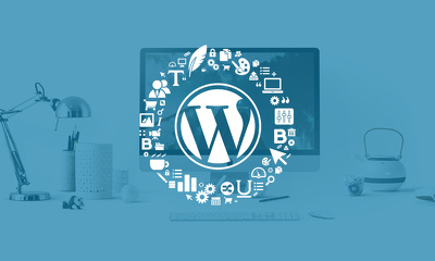 Design Responsive and SEO Friendly WordPress Website