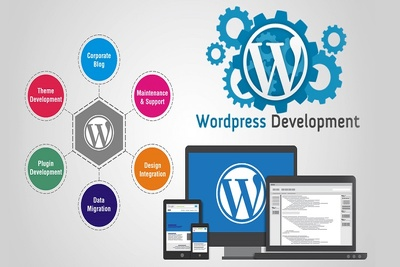 WordPress Website Changes & Updates,Plugin & Theme installation.