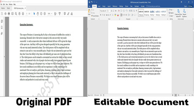 Retype upto 10 pages (Word/Excel/PowerPoint/PDF)