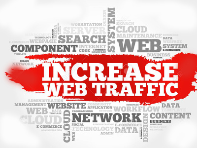 Provide 1,OOO DAILY VISITORS FOR 30 DAYS 2 MINUTES  VISIT TIME