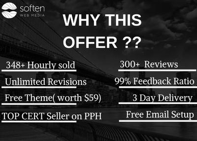 Design SEO friendly fully Responsive premium Website+FREE Theme
