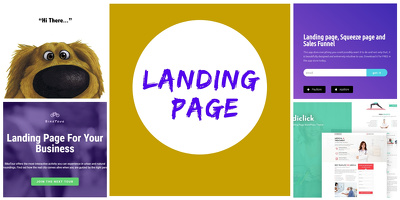Design an incredible Landing page within 24 hours