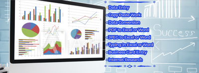 Provide 1 day Data Entry