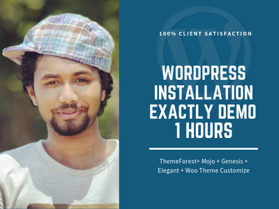 Install wordpress theme exactly like demo in 1 hrs