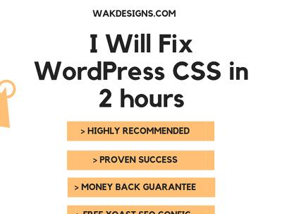 Fix Wordpress CSS In 2 Hours (Quick)