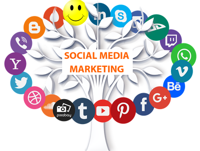 naturally Promote and grow your social media accounts