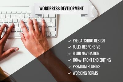 Design & Develop responsive, fast, SEO friendly WordPress Site