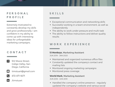 Do a professional CV / portfolio