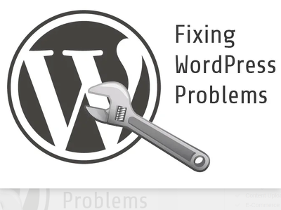 Fix or create a wordpress or shopify store.