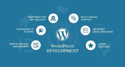 Design professional and responsive wordpress website
