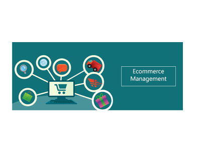 Manage E-commerce Website/Account
