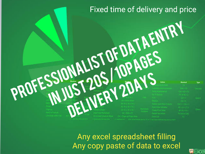 Do excel spreadsheet filling or data entry of 10pages