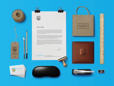 Design complete logo and brand identity kit (Web/Print Ready)