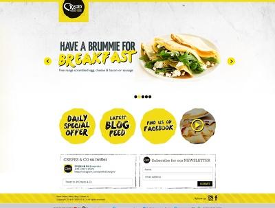 Create a Premium Responsive Wordpress Professional Website