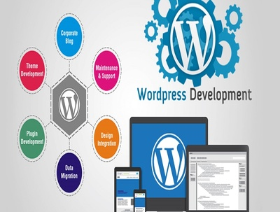 Create A Winning Wordpress Website