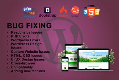 Fix php, laravel/codeigniter, html/css/bootstrap, WordPress bugs