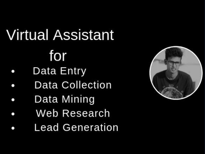 I Will Be Your Virtual Assistant For Data Entry, Data Mining,