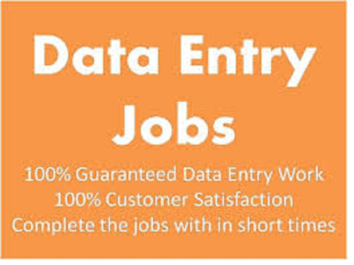 do the all kind of data entry work for 2 Hrs