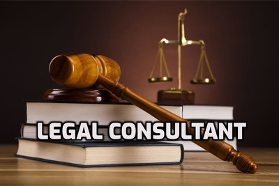 Provide Professional Legal Consultation