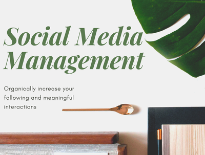 Manage your Social Media for 5 days (Instagram)