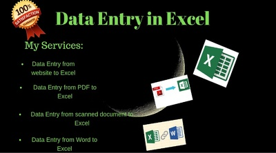 Manually type Upto 25 pages of PDF to MS Excel or MS Word