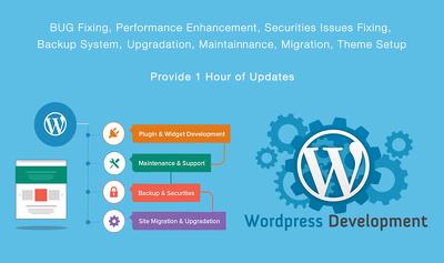 Provide 1 hour of WordPress updates,maintenance or customisation