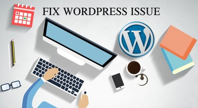 Fix any wordpress issue within 8 hours