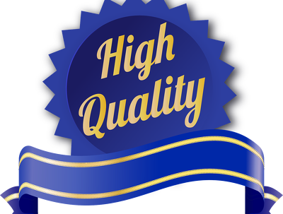 Write high quality SEO friendly article or blog post in 24 hours