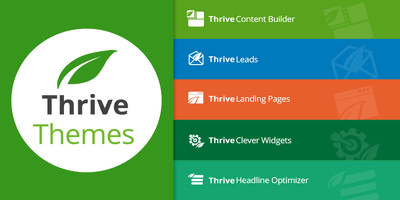 design responsive,fast, SEO friendly website With Thrive Themes