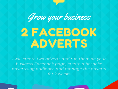Create 2 Facebook adverts, implement them and manage for 2 weeks