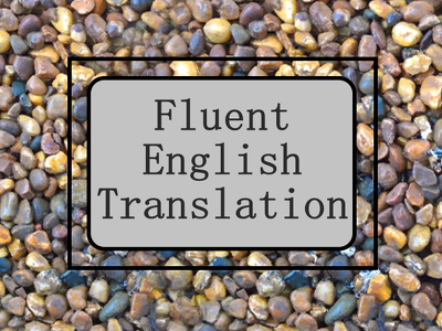 Translate ANY text from ANY language into English!