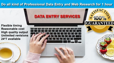 Do all kind of professional data entry and web research for 1 hr