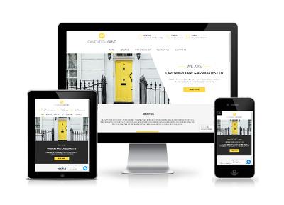 Design Responsive, Fast Loading & Secure WordPress Website