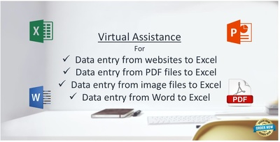 Do 400 Excel Rows Data Entry