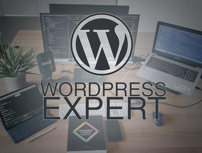 Do wordpress (cms) development